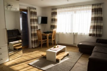 Komplett möblierte Garconnière Nähe Skilift, 6290 Mayrhofen, Wohnung